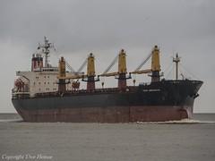 Thor Endeavour (U. Heinze) Tags: ship schiff vessel elbe cuxhaven nordsee meer olympus