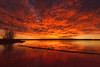 Colorado Sunrise (mclcbooks) Tags: dawn daybreak sunrise morning landscape lake silhouettes trees clouds chatfieldstatepark lakechatfield colorado reflections ice