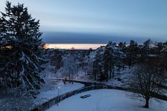 First Snow (diesmali) Tags: gothenburg västragötalandslän sweden se göteborg sverige bergsjön snow winter dusk sunset trees canoneos6d clouds longexposure canonef24105mmf4lisusm