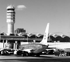 American Airline Plane at Ronald Reagan Airport (pegase1972) Tags: us usa unitedstates dca airport plane airplane aéroport avion va virginia ronaldreagenairport