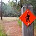 Hiking+Trail