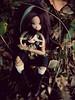 DSCN0398 (FollowingDinosaurs) Tags: bjd doll ateliermomoni mori dollzone animal goat forest atelier momoni
