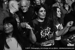2017 Bosuil-Het publiek bij Sweetkiss Momma en Danny Bryant 11-ZW