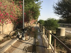 Path next to Wadi Al Ain (Patrissimo2017) Tags: cycling