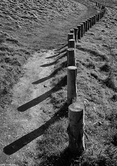 Coast Path (peterphotographic) Tags: pb120953sefexedwm coastpath olympus em5mk2 microfourthirds ©peterhall wembury southdevon devon westcountry england uk britain coast coastline walk shadow path nik silverefexpro2 blackandwhite bw monochrome ryanadams southwest southwestcoastpath nationaltrust nt southhams