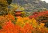 Autumnal Pagoda (Lawrence OP) Tags: japan leaves autumn red gold orange pagoda kiyomizudera temple buddhist kyoto tower