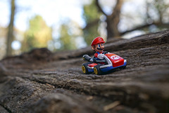 Must Dash. Late For A Date With Princess (Skyline:)) Tags: 7dwf crazytuesdaytheme whydoyoutakepictures mario smile fun red vehicle bokeh dof hat minifigure small wheels wood trees bark