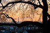 In the frame (MF[FR]) Tags: sky sunset tree paris france eiffel tower roofs montmartre butte samsung tour golden hour arbre nostalgie ciel coucher de soleil toits île nx1