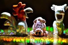Snorta (ladybugdiscovery) Tags: macromonday gamesorgamepieces snorta memberschoice rooster