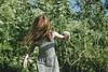 (Cristóbal Marambio) Tags: redhead portrait girl xt1 fujifilm fuji green explore chile casablanca mc1r hair dress wind