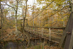 untitled-2.jpg (dzmears) Tags: landscape bridge peaceful woods water day overcast fall orange rocks leaves creek colorful river forest hiking trail clouds green pretty yellow trees park