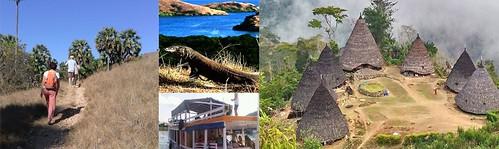 Flores and Komodo island - Indonesia#flores #komodotrip #tourkomodo #travel #holiday