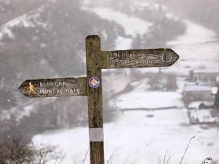snow-find
