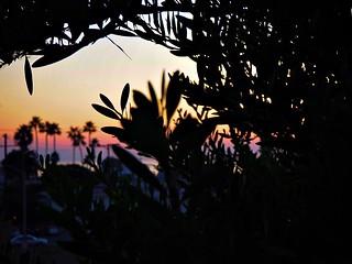 sunset in playa