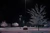 Alone with the Night (oldoinyo) Tags: northcarolina snow snowstorm autumn unexpected trees ultraviolet uv uva