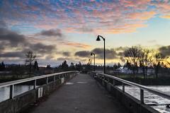 Autzen Footbridge in Eugene, OR (marinstuart) Tags: eugene oregon nature uo ducks plants graffiti fall reflection photography beautiful sunset sky water droplets bridge clouds color
