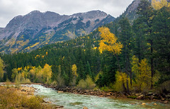 autumn - Animas River valley, N of needleton siding, Colorado, USA 4 (Russell Scott Images) Tags: autumn fall colours animasrivervalley sanjuannationalforest needletonsiding silverton heritage durangosilvertonnarrowgaugerailroad line colorado usa russellscottimages