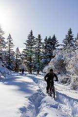 Hjólað í snjó (Harpa Hrund) Tags: bike cycling fatbike trail outdoor sport leisure