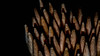 Tooth sticks / Marco Mondays (camillagarin) Tags: macro mondays sticks
