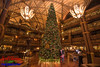 Disney's Animal Kingdom Lodge Christmas (Scottwdw) Tags: animalkingdomlodge christmas disneysanimalkingdom florida guests lobby orlando people photographer photopass resort travel tree vacation waltdisneyworld unitedstatesofamerica nikon d750 nikon1635mmf4vr family flash castmember