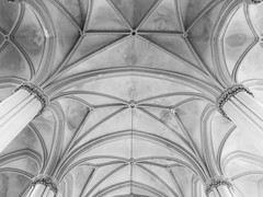 (olya pashkova) Tags: ukraine lviv symmetry geometric neogothic gothic ceiling church kostel architecture monochrome blackandwhite olhaandelizabethchurch