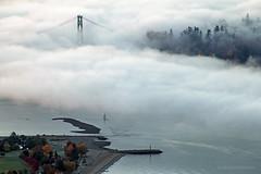 First Narrows Fog ☁☁☁ Vancouver, BC (Michael Thornquist) Tags: fogcouver lionsgatebridge stanleypark fog amblesidepark welcomingtotem westvancouver westvan vancouver firstnarrows firstnarrowsbridge burrardinlet prospectpoint myportcity 604now photos604 explorebc explorecanada canoncanada ilovebc britishcolumbia pacificnorthwest pnw canada 500px