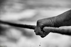 DSC_2504 (ahcravo gorim) Tags: xávega torreira mar mãos lágrima ahcravo gorim
