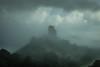the road to a castle (stocks photography.) Tags: michaelmarsh photographer corfe castle dorset mist fog foggy landscape
