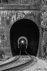 CRR 800 @ Millers Yard, VA (Michael Polk) Tags: clinchfield railroad emd f7 f3 800 csx santa train passenger tunnel 1909