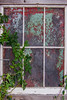 What's The Story? (lorinleecary) Tags: cambria centralcoastcalifornia curves foliage green lines red rust vines window