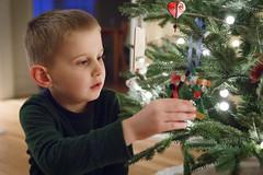 330/365 tree decoration