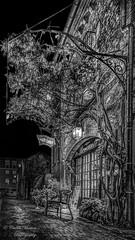 Brocante très apprécié de Cabu ! (je suis Charlie). (Cedraw) Tags: rue ruelle rurale pavés brocante antiquitésbrocante antiquités ancien ancienne nuit noiretblanc noir blanc grandest black white grey blackwhite auvent vigne pieddevigne branches feuilles arbres tron grimpant pierres briques voûte voûté cabu jesuischarlie amis lumières lumineux enseigne châlonsenchampagne champagneardennes est nord froid humide humidité reflets refléter brillant chaise bois sundaylights sigma1750mm sigma nikon gris