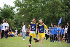 11182017-school50 (EN&Jane (enpan . 潘榮恩)) Tags: 2017 school xun cen sports