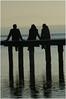 SG1L0240 (fotokunst_kunstfoto) Tags: silhouette silhouett silhouetten schattenbilder umriss kontur konturen schattenriss