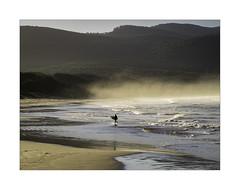 Cloudy Bay surfer (jen 3163) Tags: surfer surf cloudybay brunyisland tasmania seaspray