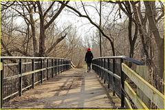 171202 Pomona Mills Park (13) (Aben on the Move) Tags: pomonamillspark toronto thornhill ontario canada park nature