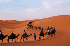 Sahara, Morocco (T is for traveler) Tags: traveling travel traveler tisfortraveler photography digitalnomad backpacker summer trip adventure africa morocco merzouga desert sahara sand dunes landscape sky epic canon 700d 1855mm camel people tour caravan