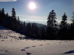Beskid Sądecki (karolina*) Tags: beskidsądecki polska beskidy tatry zima winter śnieg las góry mountains