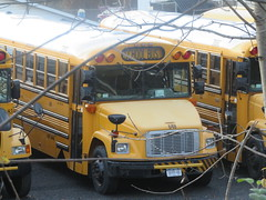 First Student #648 (ThoseGuys119) Tags: firststudentinc wallkillny schoolbus thomasbuilt icce freightliner fs65 ce