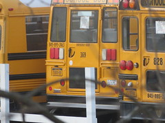 First Student #369 (ThoseGuys119) Tags: firststudentinc wallkillny schoolbus thomasbuilt icce freightliner fs65 ce
