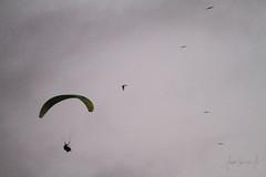 INFILTRADO (Jorge F. Sarmiento Jr.) Tags: canoa manabi ecuador parapente flying birdman bir man