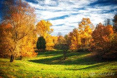 Kentucky - Fall Scene (AP Imagery) Tags: view leaves scene country color landscape field backroads sky autumn rural kentucky fall orage usa
