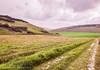 The Path to Nature (Francesco Impellizzeri) Tags: brighton england uk canon landscape clouds sky path