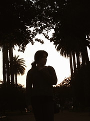 Pontevedra (albavv46) Tags: silhouette silueta girl pontevedra galicia spain nikon photography portrait trees palmera nightfall imaxe017 hair light
