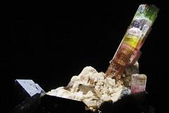 Specimen (Ellsasha) Tags: houstonmuseumofnaturalscience gems minerals colors colour houston collection