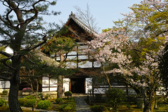 DP2M4699 (bethom33) Tags: sigma dp2merrill dp2 merrill kyoto temple rokuoin japan sakura