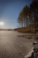 20171115003603 (koppomcolors) Tags: koppomcolors värmland varmland sweden sverige scandinavia vinter winter lake