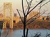 Washington Heights gold (DannyAbe) Tags: hudsonriver georgewashingtonbridge washintonheights evening goldenhour manhattan newyorkcity autumn
