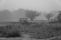 Seating In the Fog (Bud in Wells, Maine) Tags: bw harborpark maine spring wells wellsharbor bench fog morning monochrome