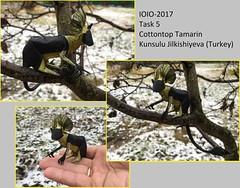 5.russia-(aleksandr_timoshik)_tamarin (shooroop83) Tags: ioio2017 origami ioio cottontop tamarin kunsulu jilkishieva